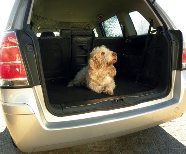 Hondennet
